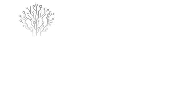 Netzer Consulting, Partner Microsoft Dynamics